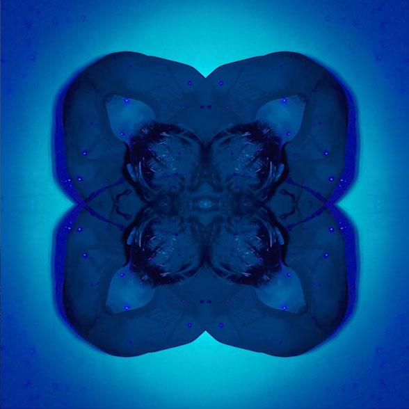 Benedikte Esperi | The spotless mind